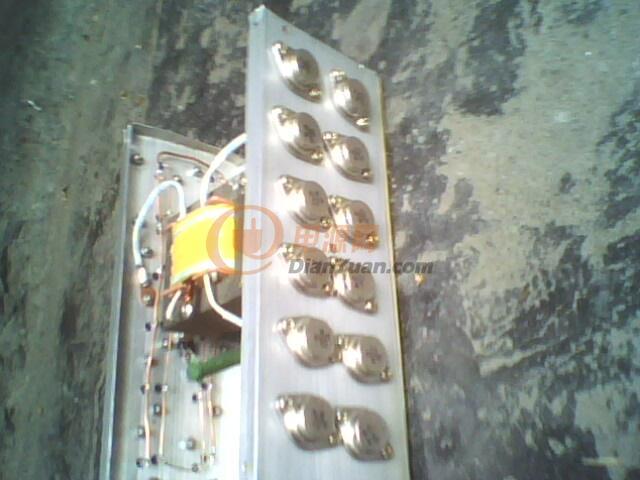 我的处女做 低频自激机